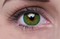 ColourVUE Basic Green (2 lentillas)