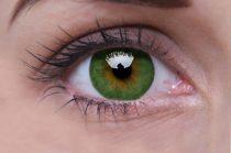 ColourVUE Basic Green (2 lentillas)