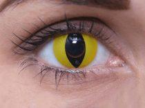 ColourVUE Crazy Cat's Eye (2 lentillas)
