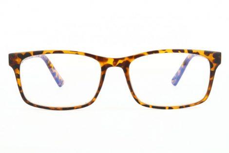 Gafas para ordenador BLF73A