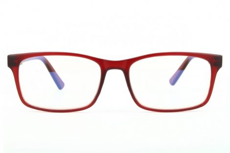 Gafas para ordenador BLF73C