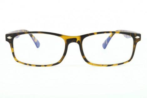 Gafas para ordenador BLF83A